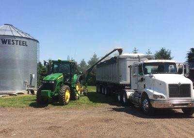 Loading Out Beans